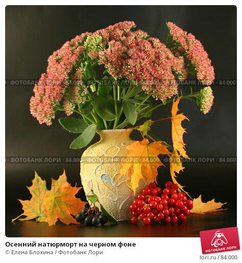 Купить «Осенний натюрморт на черном фоне», фото № 84000, снято 13 сентября 2007 г. (c) Елена Блохина / Фотобанк Лори