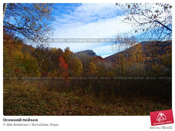 Купить «Осенний пейзаж», фото № 80032, снято 25 октября 2006 г. (c) Alla Andersen / Фотобанк Лори