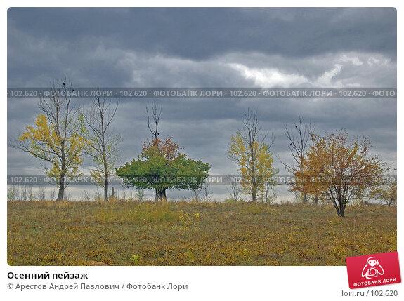 Осенний пейзаж, фото № 102620, снято 23 июля 2017 г. (c) Арестов Андрей Павлович / Фотобанк Лори