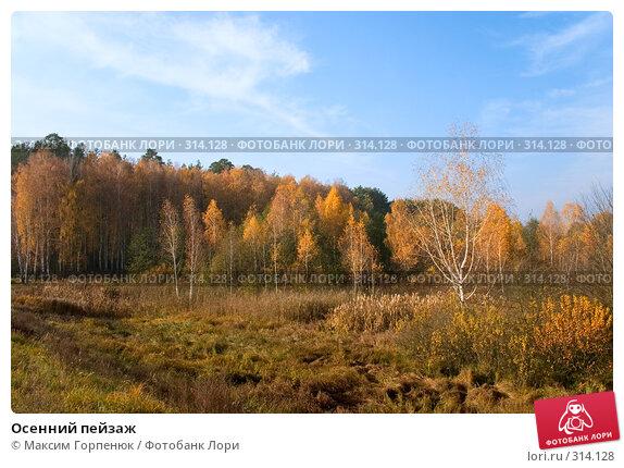 Осенний пейзаж, фото № 314128, снято 31 октября 2004 г. (c) Максим Горпенюк / Фотобанк Лори