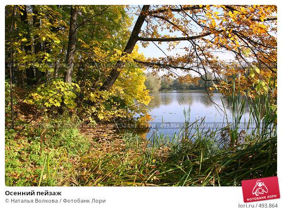 Осенний пейзаж, эксклюзивное фото № 493864, снято 4 октября 2008 г. (c) Наталья Волкова / Фотобанк Лори