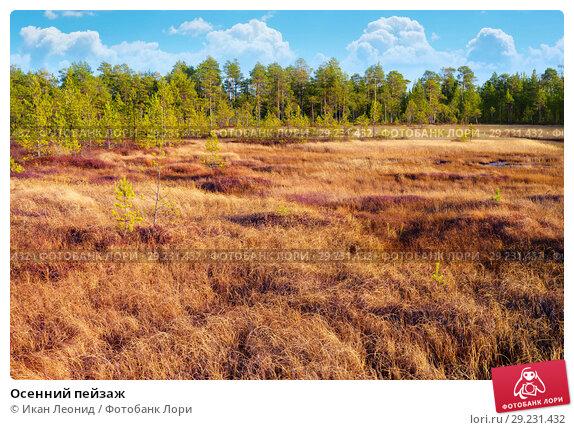 Купить «Осенний пейзаж», фото № 29231432, снято 5 октября 2018 г. (c) Икан Леонид / Фотобанк Лори