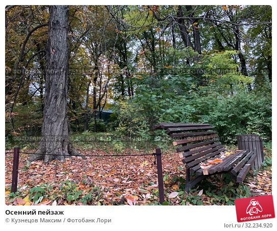Купить «Осенний пейзаж», фото № 32234920, снято 30 сентября 2019 г. (c) Кузнецов Максим / Фотобанк Лори