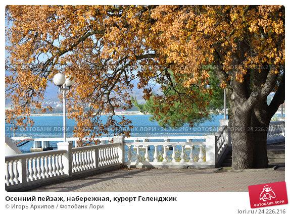 Купить «Осенний пейзаж, набережная, курорт Геленджик», фото № 24226216, снято 9 ноября 2016 г. (c) Игорь Архипов / Фотобанк Лори