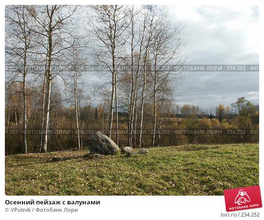 Купить «Осенний пейзаж с валунами», фото № 234252, снято 8 октября 2005 г. (c) VPutnik / Фотобанк Лори
