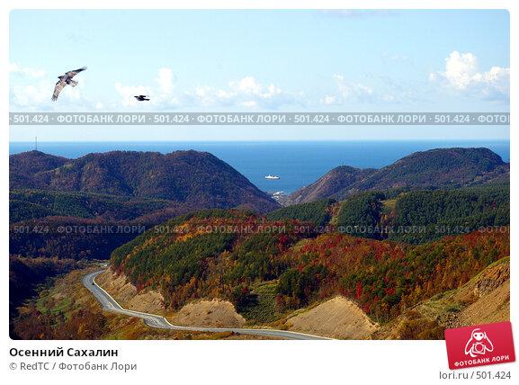 Купить «Осенний Сахалин», фото № 501424, снято 8 октября 2008 г. (c) RedTC / Фотобанк Лори