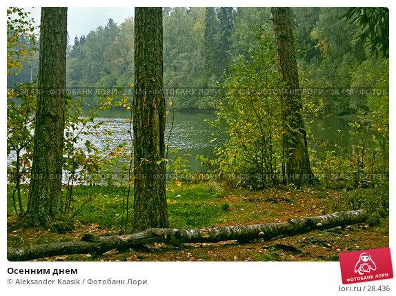 Осенним днем, фото № 28436, снято 26 июля 2017 г. (c) Aleksander Kaasik / Фотобанк Лори