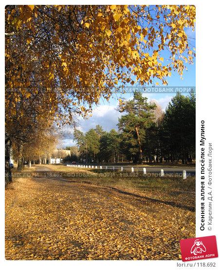 Купить «Осенняя аллея в посёлке Мулино», фото № 118692, снято 19 октября 2005 г. (c) Карелин Д.А. / Фотобанк Лори