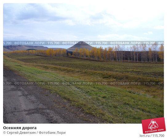 Осенняя дорога, фото № 115700, снято 16 октября 2007 г. (c) Сергей Девяткин / Фотобанк Лори
