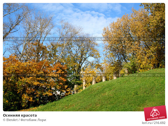 Осенняя красота, фото № 216692, снято 26 мая 2017 г. (c) ElenArt / Фотобанк Лори