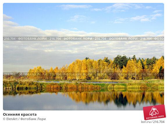 Осенняя красота, фото № 216704, снято 8 декабря 2016 г. (c) ElenArt / Фотобанк Лори