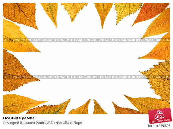 Осенняя рамка, фото № 39896, снято 9 сентября 2006 г. (c) Андрей Щекалев (AndreyPS) / Фотобанк Лори
