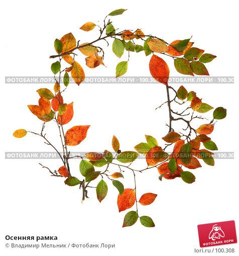 Осенняя рамка, фото № 100308, снято 4 октября 2007 г. (c) Владимир Мельник / Фотобанк Лори
