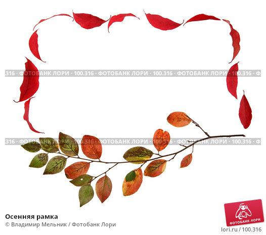 Осенняя рамка, фото № 100316, снято 27 сентября 2007 г. (c) Владимир Мельник / Фотобанк Лори