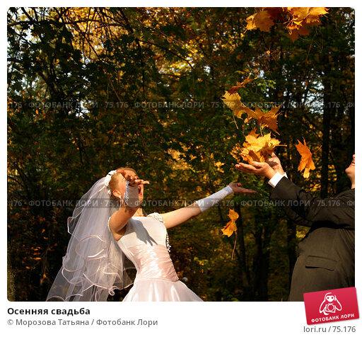 Купить «Осенняя свадьба», фото № 75176, снято 2 октября 2005 г. (c) Морозова Татьяна / Фотобанк Лори