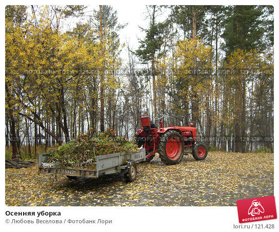 Осенняя уборка, фото № 121428, снято 4 октября 2007 г. (c) Любовь Веселова / Фотобанк Лори