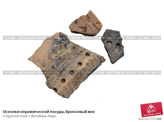 Осколки керамической посуды,бронзовый век, фото № 117448, снято 15 ноября 2007 г. (c) Круглов Олег / Фотобанк Лори