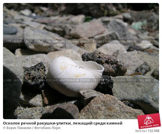 Осколок речной ракушки-улитки, лежащий среди камней, фото № 132948, снято 5 июня 2004 г. (c) Борис Панасюк / Фотобанк Лори