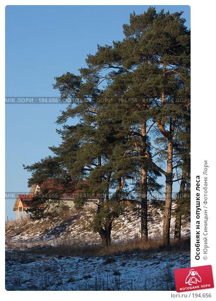 Особняк на опушке леса, фото № 194656, снято 8 января 2008 г. (c) Юрий Синицын / Фотобанк Лори