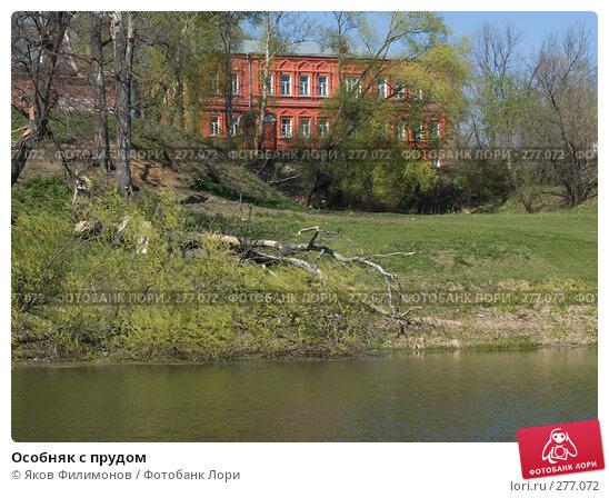 Особняк с прудом, фото № 277072, снято 26 апреля 2008 г. (c) Яков Филимонов / Фотобанк Лори