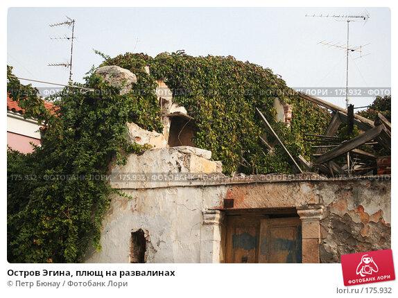 Остров Эгина, плющ на развалинах, фото № 175932, снято 7 октября 2007 г. (c) Петр Бюнау / Фотобанк Лори