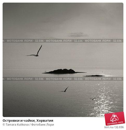 Островки и чайки, Хорватия, фото № 32036, снято 8 апреля 2007 г. (c) Tamara Kulikova / Фотобанк Лори