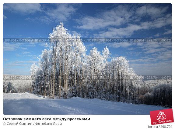 Островок зимнего леса между просеками, фото № 298704, снято 20 января 2008 г. (c) Сергей Сынтин / Фотобанк Лори
