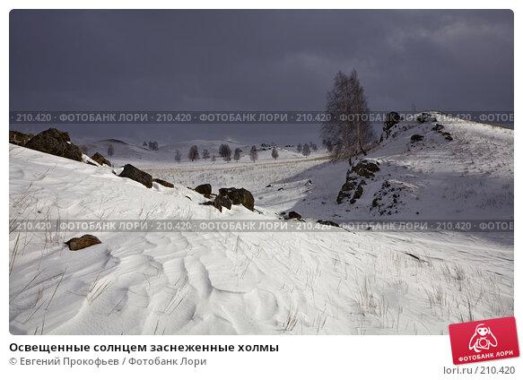 Освещенные солнцем заснеженные холмы, фото № 210420, снято 24 февраля 2008 г. (c) Евгений Прокофьев / Фотобанк Лори