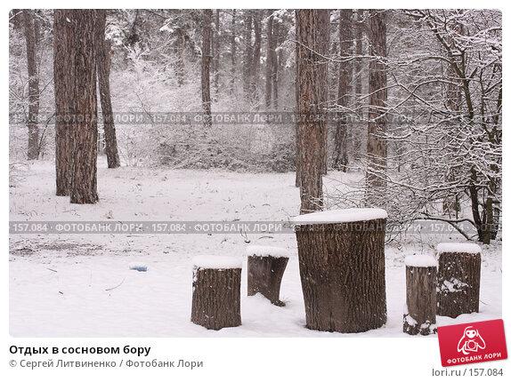 Отдых в сосновом бору, фото № 157084, снято 16 декабря 2007 г. (c) Сергей Литвиненко / Фотобанк Лори