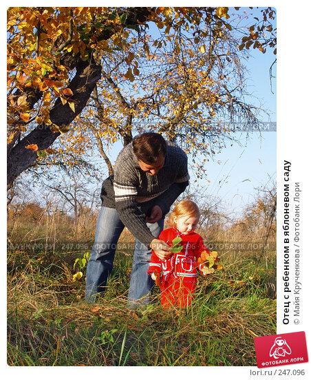 Отец с ребенком в яблоневом саду, фото № 247096, снято 29 сентября 2007 г. (c) Майя Крученкова / Фотобанк Лори