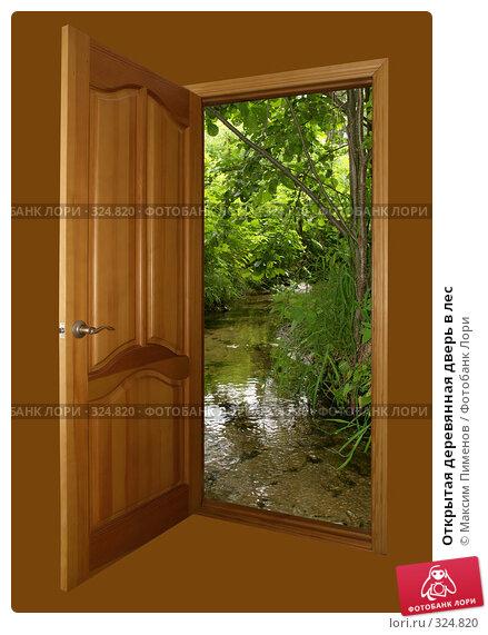 Открытая деревянная дверь в лес, фото № 324820, снято 15 декабря 2006 г. (c) Максим Пименов / Фотобанк Лори