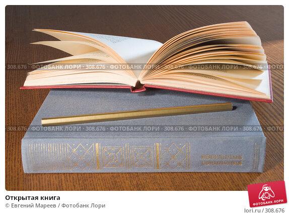Открытая книга, фото № 308676, снято 3 июня 2008 г. (c) Евгений Мареев / Фотобанк Лори