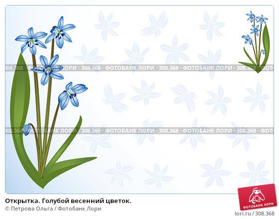 Купить «Открытка. Голубой весенний цветок.», иллюстрация № 308368 (c) Петрова Ольга / Фотобанк Лори