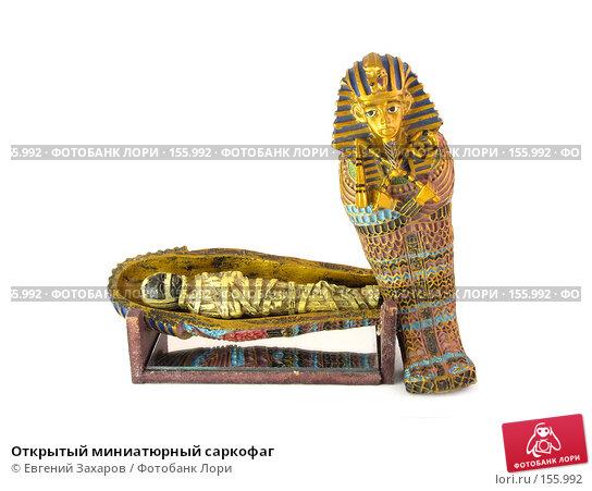 Открытый миниатюрный саркофаг, эксклюзивное фото № 155992, снято 21 декабря 2007 г. (c) Евгений Захаров / Фотобанк Лори