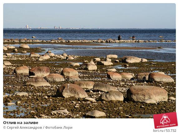 Отлив на заливе, фото № 53732, снято 2 июня 2007 г. (c) Сергей Александров / Фотобанк Лори