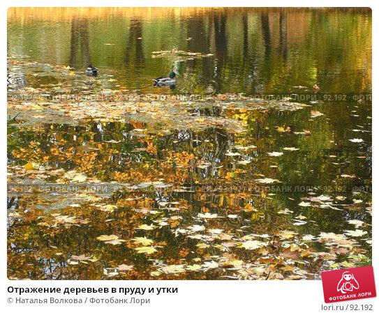 Купить «Отражение деревьев в пруду и утки», фото № 92192, снято 3 октября 2007 г. (c) Наталья Волкова / Фотобанк Лори