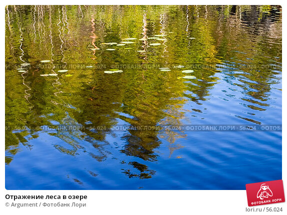 Отражение леса в озере, фото № 56024, снято 10 августа 2006 г. (c) Argument / Фотобанк Лори