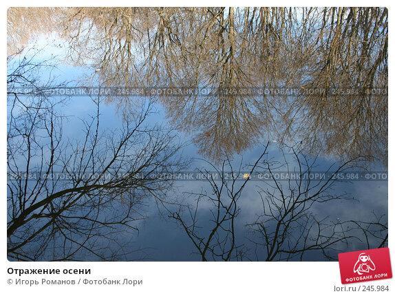 Купить «Отражение осени», фото № 245984, снято 6 ноября 2006 г. (c) Игорь Романов / Фотобанк Лори