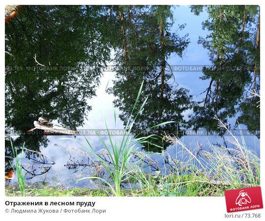 Купить «Отражения в лесном пруду», фото № 73768, снято 11 июля 2007 г. (c) Людмила Жукова / Фотобанк Лори