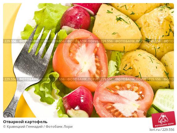 Отварной картофель, фото № 229556, снято 6 июня 2004 г. (c) Кравецкий Геннадий / Фотобанк Лори