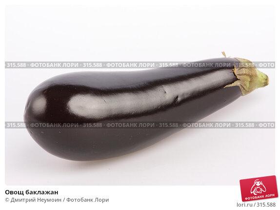 Купить «Овощ баклажан», эксклюзивное фото № 315588, снято 2 июня 2008 г. (c) Дмитрий Неумоин / Фотобанк Лори