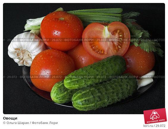 Купить «Овощи», фото № 29072, снято 10 мая 2006 г. (c) Ольга Шаран / Фотобанк Лори