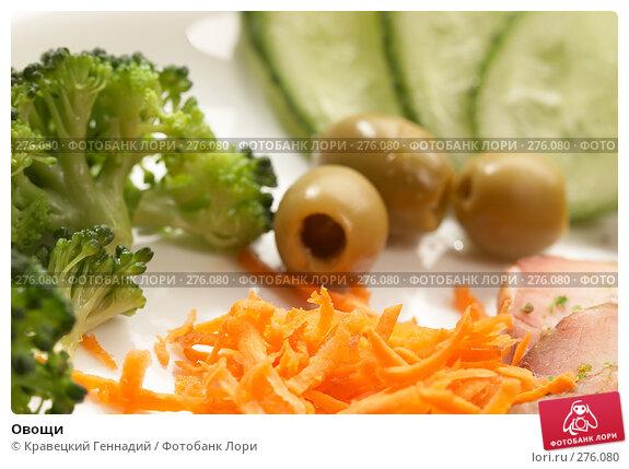 Овощи, фото № 276080, снято 24 сентября 2005 г. (c) Кравецкий Геннадий / Фотобанк Лори