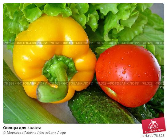 Овощи для салата, фото № 78328, снято 22 июня 2006 г. (c) Моисеева Галина / Фотобанк Лори