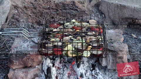 Овощи гриль на решетке жарятся на костре. Стоковое видео, видеограф Земсков Андрей  Владимирович / Фотобанк Лори