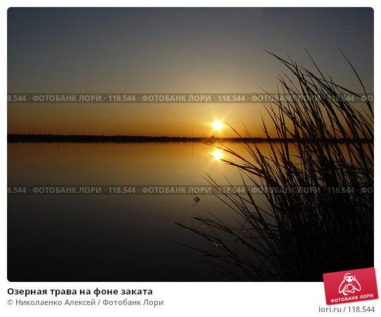 Озерная трава на фоне заката, фото № 118544, снято 28 апреля 2017 г. (c) Николаенко Алексей / Фотобанк Лори