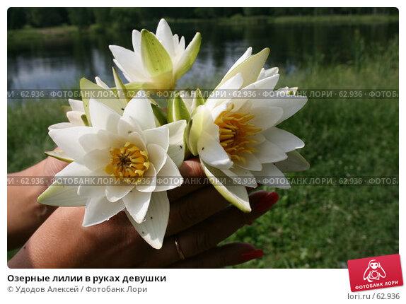 Озерные лилии в руках девушки, фото № 62936, снято 17 июня 2007 г. (c) Удодов Алексей / Фотобанк Лори