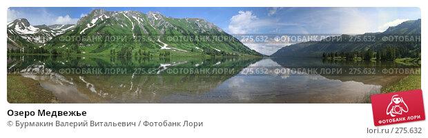 Озеро Медвежье, фото № 275632, снято 21 июля 2017 г. (c) Бурмакин Валерий Витальевич / Фотобанк Лори
