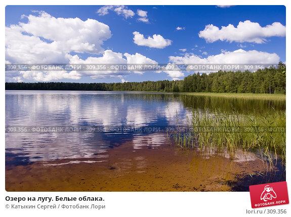 Озеро на лугу. Белые облака., фото № 309356, снято 21 июля 2007 г. (c) Катыкин Сергей / Фотобанк Лори
