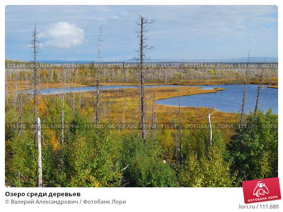 Озеро среди деревьев, фото № 111680, снято 9 сентября 2007 г. (c) Валерий Александрович / Фотобанк Лори